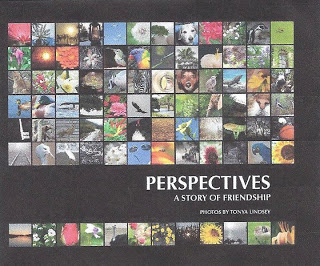 perspectivesbook