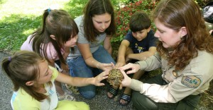 Children learning about the features of a box turtle with a Audubon State Park instructor.