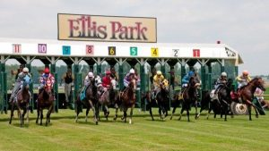 Thoroughbred horses dash out of the starting gate during a turk races at Ellis Park in Henderson.