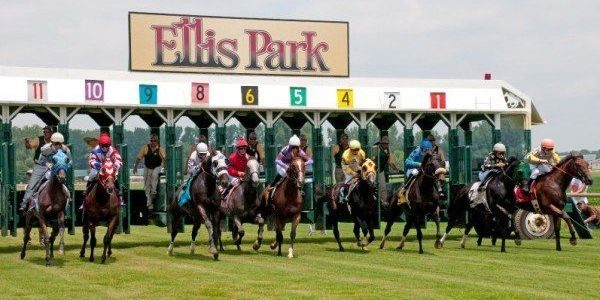 Turf Races Ellis Park
